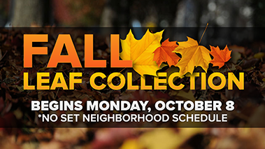 Fall_Leaf_Collection_2018_website_thumbnail